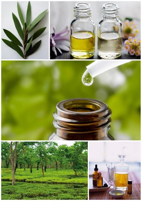 Công dụng 10 tinh dầu thiên nhiên hàng đầu